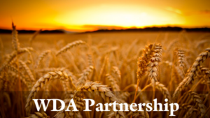 WDA Parnership Wheat