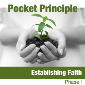 pocket principle Getting Started